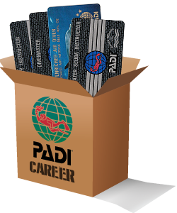 callout padi career dive cards