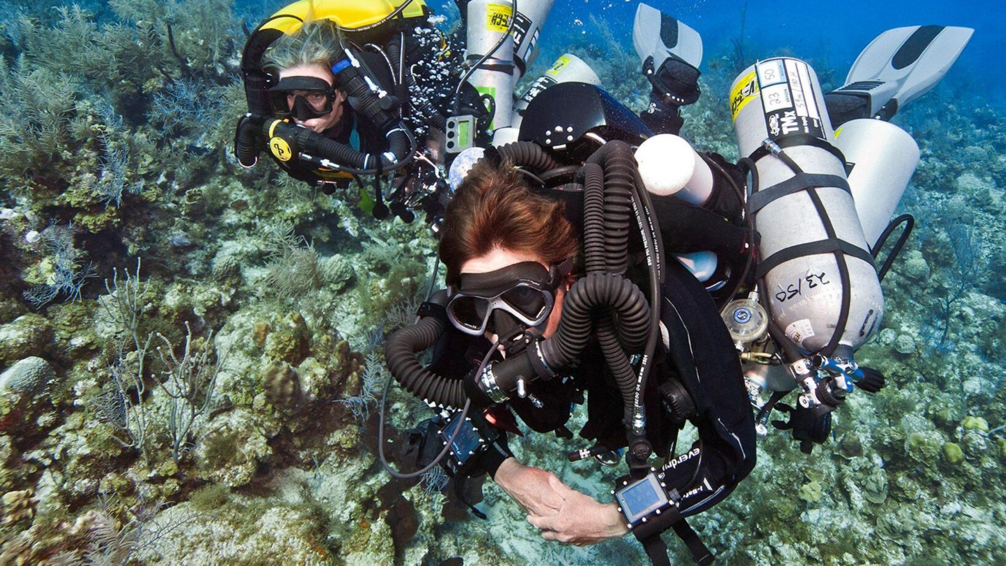 tec 100 closed circuit rebreather