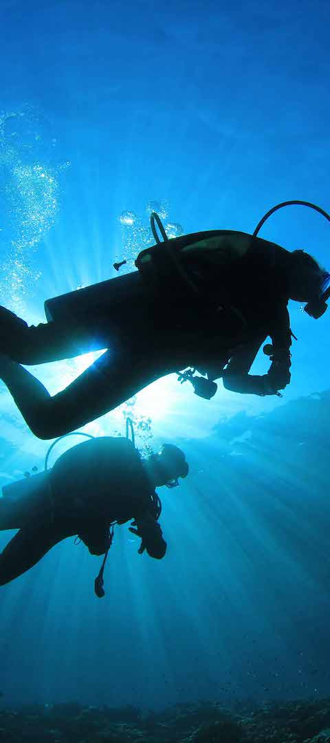Divers silhouette 1